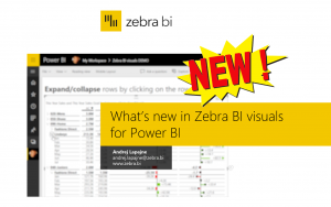 What's new in Zebra BI visuals for Power BI – November 2018 webinar