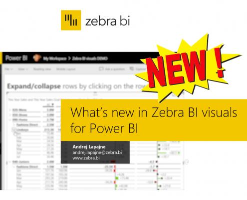 Zebra BI Webinars   Learn financial reporting in Power BI